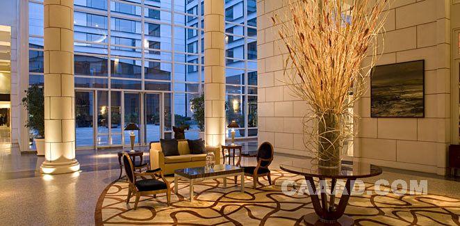 大堂休闲区地毯欧式椅子效果图