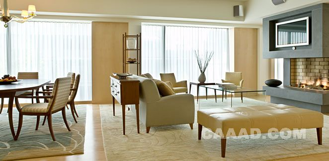 套房客厅沙发榻地毯椅子电视墙装饰柜火炉