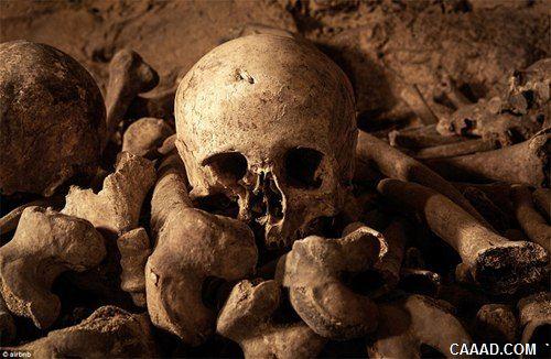 """全球最恐怖""""卧室"""":内藏600万骷髅骨骼"""