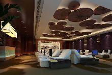 度假主题酒店设计:安徽九华山龙溪山庄大酒店-休息区